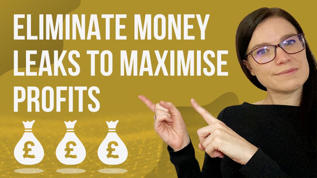 a blog featured image banner entitled eliminate money leaks to maximise profits